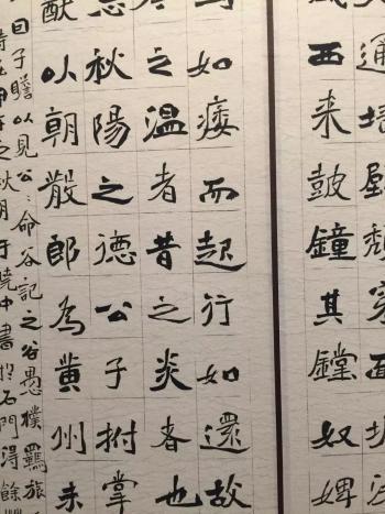 第五届中国书法兰亭奖入展作品(楷书作品)